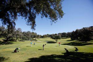 torneo_golf
