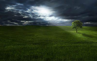 Golf sostenible ¿Es posible?