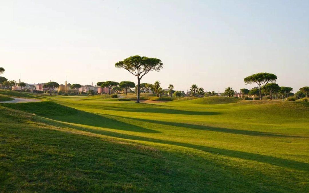 ¡Comenzamos la vuelta al Golf!